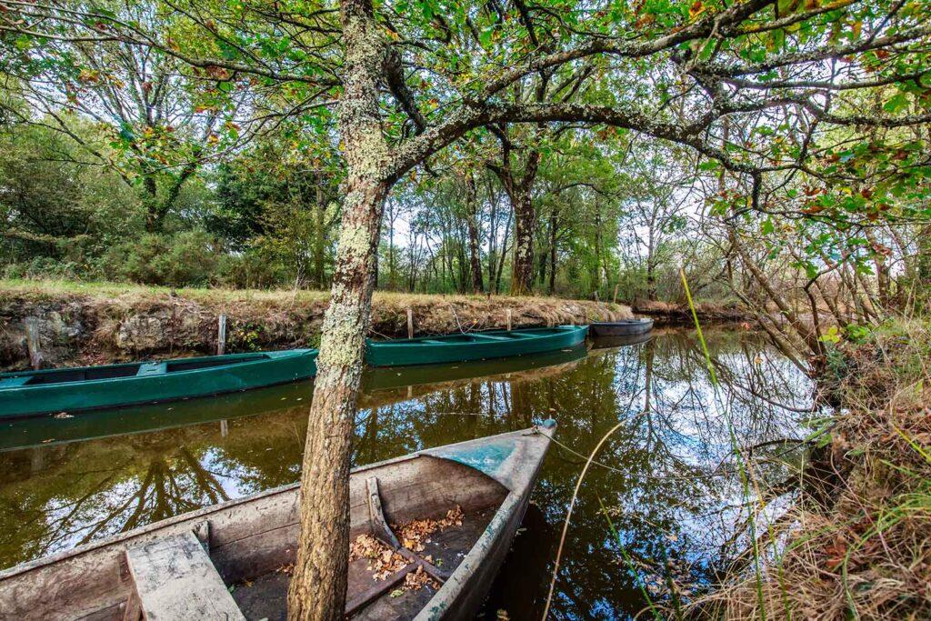 5 sites touristiques à découvrir à proximité des gîtes: Le Parc naturel régional de brière